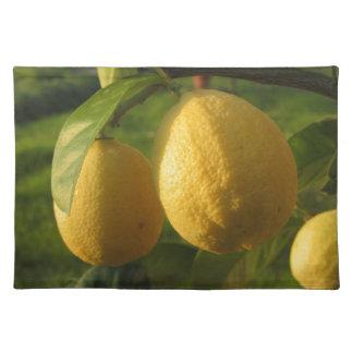 Salvamanteles Limones amarillos que crecen en el árbol en la