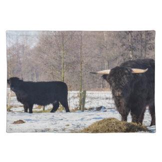 Salvamanteles Montañeses escoceses negros en nieve del invierno