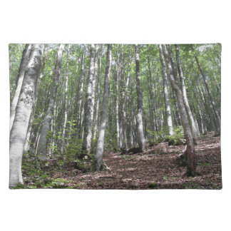 Salvamanteles Paisaje del bosque de la haya en verano. Toscana,