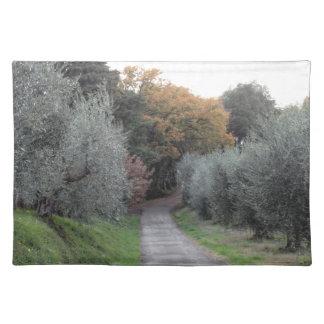 Salvamanteles Paisaje rural con la carretera de asfalto en el