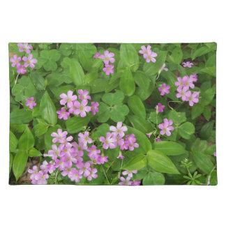 Salvamanteles Pequeños wildflowers delicados rosados