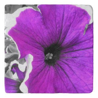 Salvamanteles Petunias blancos y negros teñidas púrpura