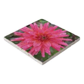 Salvamanteles Piedra rosada brillante Trivet de la dalia