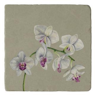 Salvamanteles Pintura de la acuarela de la orquídea