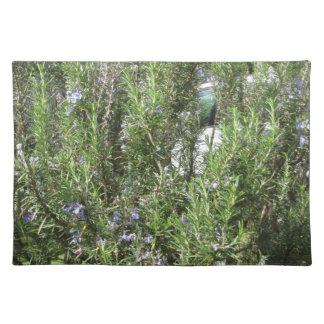 Salvamanteles Planta de Rosemary con las flores. Toscana, Italia
