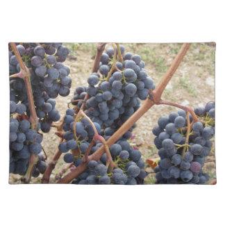 Salvamanteles Uvas rojas en la vid. Toscana, Italia