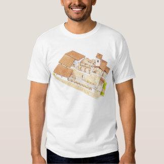 San Millan de la Cogolla. Monasterio de Suso. La Camisetas