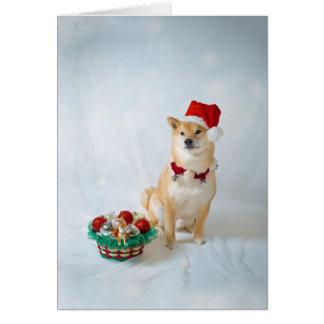 Santa Barkley, sobre de la tarjeta de felicitación