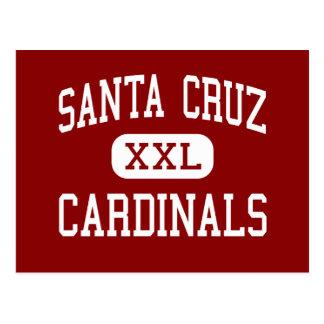 Santa Cruz - cardenales - alto - Santa Cruz Postales