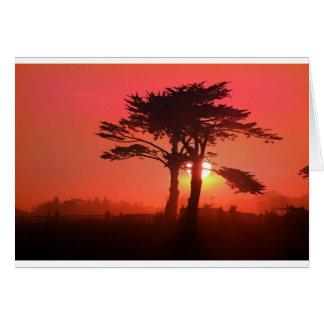 Santa Cruz Sáhara Felicitación