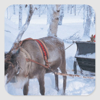Santa en su trineo pegatina cuadrada