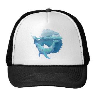 Santuario de la ballena del océano meridional gorras
