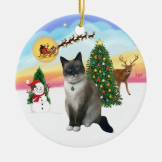 Saque - el gato del zapato de la nieve ornamento para arbol de navidad