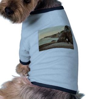 Sark, bahía de Dixcart, classi de las Islas del Ca Camisas De Mascota