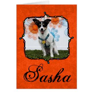Sasha - Jack Russell Tarjeta De Felicitación
