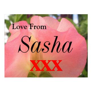 Sasha Postal