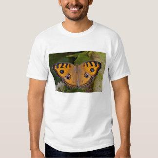 SE Asia, Tailandia, Krabi, el pensamiento del pavo Camiseta