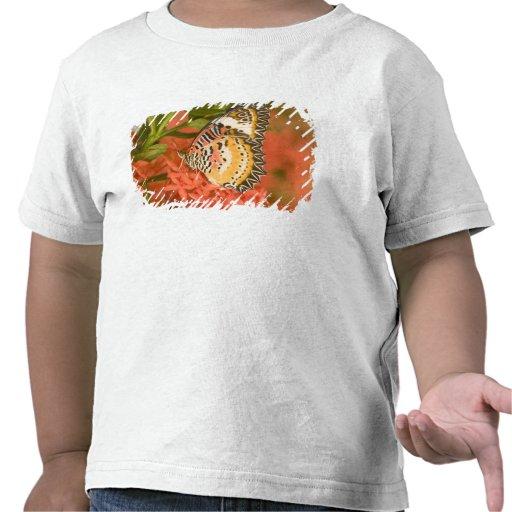 SE Asia, Tailandia, parque nacional del Ordenador  Camisetas
