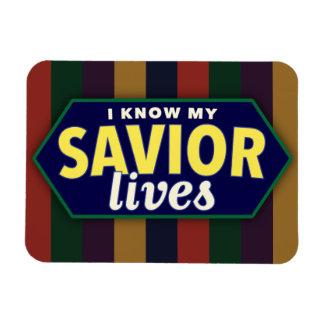 Sé mis vidas del salvador. Imán de la foto de LDS