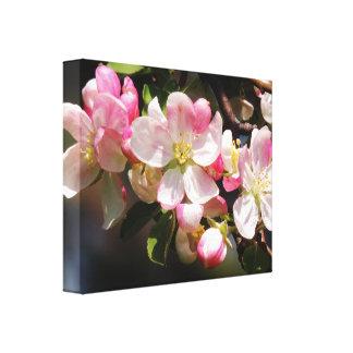 Se ruboriza la lona rosada de las flores de la impresión en lienzo