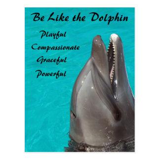 Sea como la postal del delfín