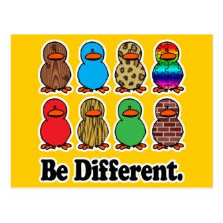 sea patos ducky de diverso modelo divertido postal