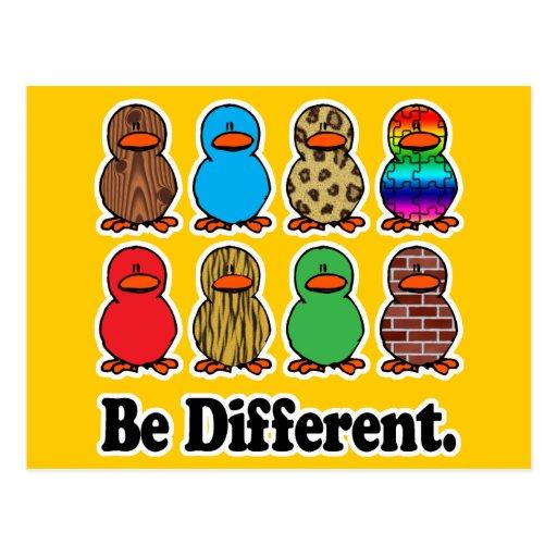 sea patos ducky de diverso modelo divertido postales
