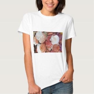 Seashells - fotografía ascendente cercana de la camisetas