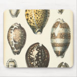 Seashells únicamente formados tapete de raton