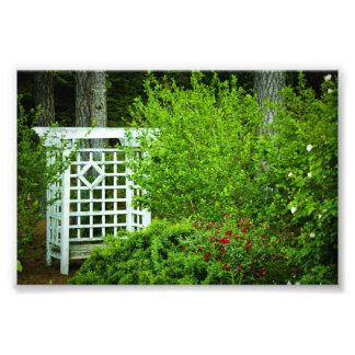 Seat en el jardín fotografia