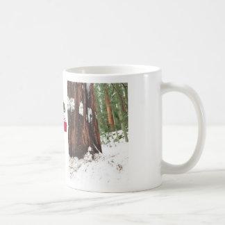 Secoya en la taza de la nieve