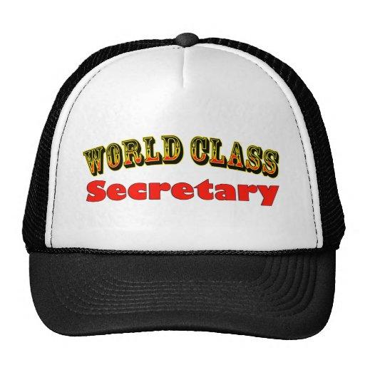 Secretaria Gorro