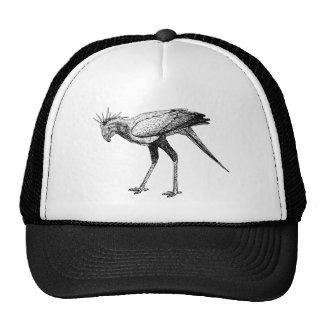 Secretaria negra y blanca pájaro del dibujo lineal gorro de camionero