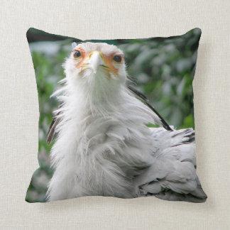 Secretaria pájaro cojín decorativo