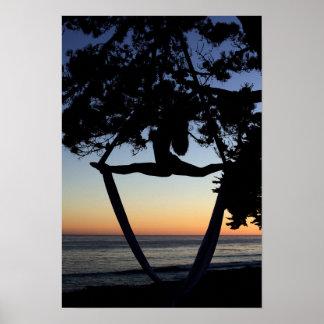 Sedas aéreas en la vertical de la puesta del sol póster