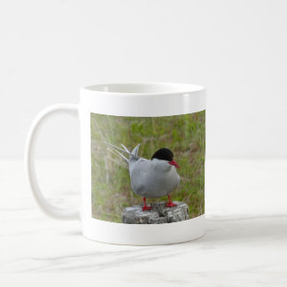 Seeschwalbe- tern pájaro taza