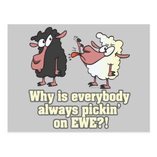 selección en humor de las ovejas negras de la OVEJ Tarjetas Postales