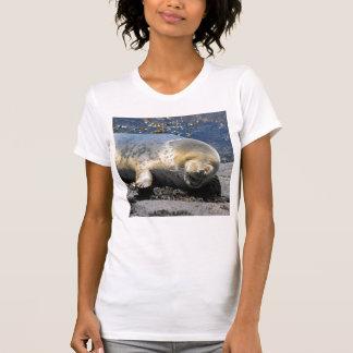 selle cría de foca de risa FELIZ de la ha… ha… Camiseta