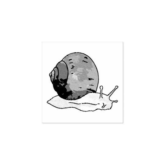 Sello De Caucho caracol