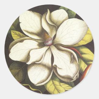 Sello floral del sobre del pegatina de la magnolia