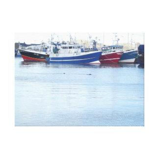 Sellos en el puerto de Howth en Dublín Irlanda Lienzo