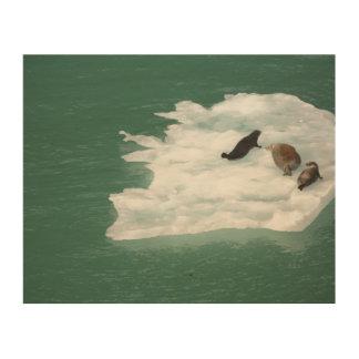 Sellos en una impresión de madera del iceberg