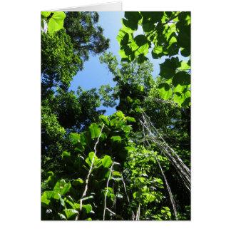 Selva hawaiana tarjeta de felicitación