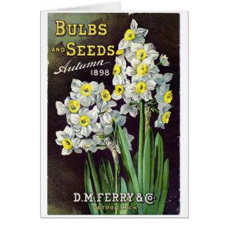 Semillas y bulbos 1898 del transbordador del DM Tarjeta De Felicitación