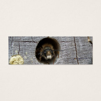 señal de la abeja ocupada tarjeta de visita pequeña