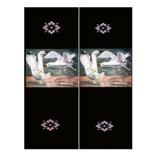 Señal de las gaviotas que lucha postal