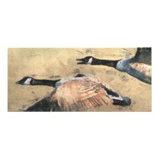 Señal de los gansos del vuelo diseños de tarjetas publicitarias