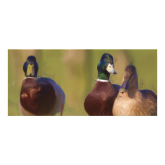 Señal del pato diseños de tarjetas publicitarias