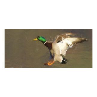 Señal del pato tarjeta publicitaria