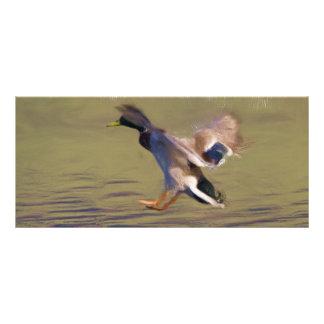 Señal del pato tarjeta publicitaria a todo color